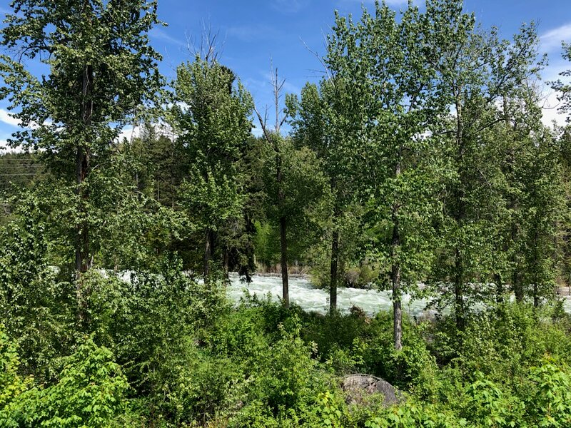 Flathead Valley - BF - Bearister Den, holiday rental in Woods Bay