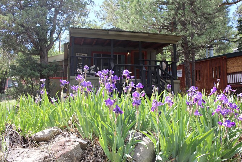 Carter`s Charm Cabin  Carter's Charm Cabin - Cozy Cabins Real Estate, LLC., vacation rental in Ruidoso Downs