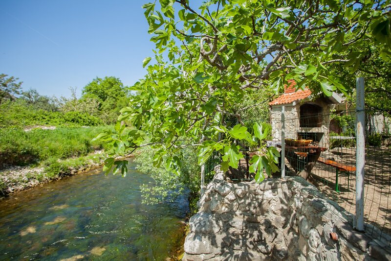 House with large garden, right next to the river, holiday rental in Zrnovnica
