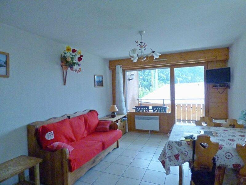 Charmant 2 pièces + cabine + garage fermé à Saint-Jean-de-Sixt, holiday rental in Saint-Jean-de-Sixt