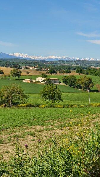Gite du Vigneron, location de vacances à La Courtete