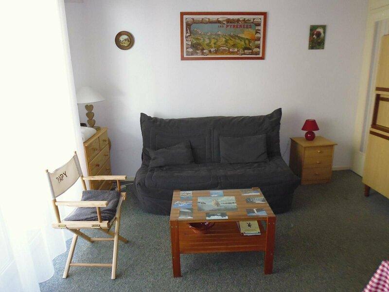 Studio cabine 4 personnes pied de pistes, holiday rental in Arbeost