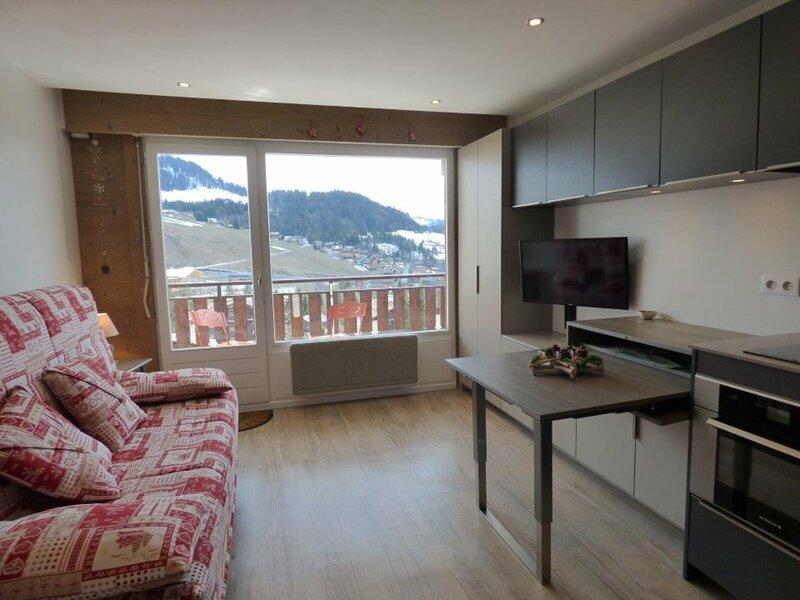 Coup de Coeur : Studio entièrement rénové avec vue panoramique, location de vacances à Le Petit-Bornand-les-Glières