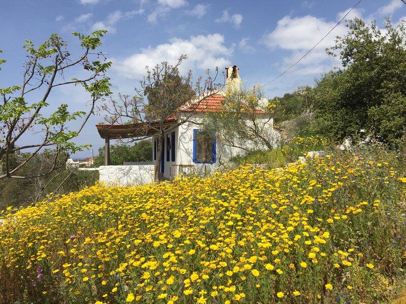 VILLAGE HOUSE, POOL, SEA VIEW, vacation rental in Yalikavak