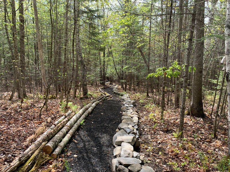 Tentrr Signature Site - Naughty Pines, holiday rental in Sebec