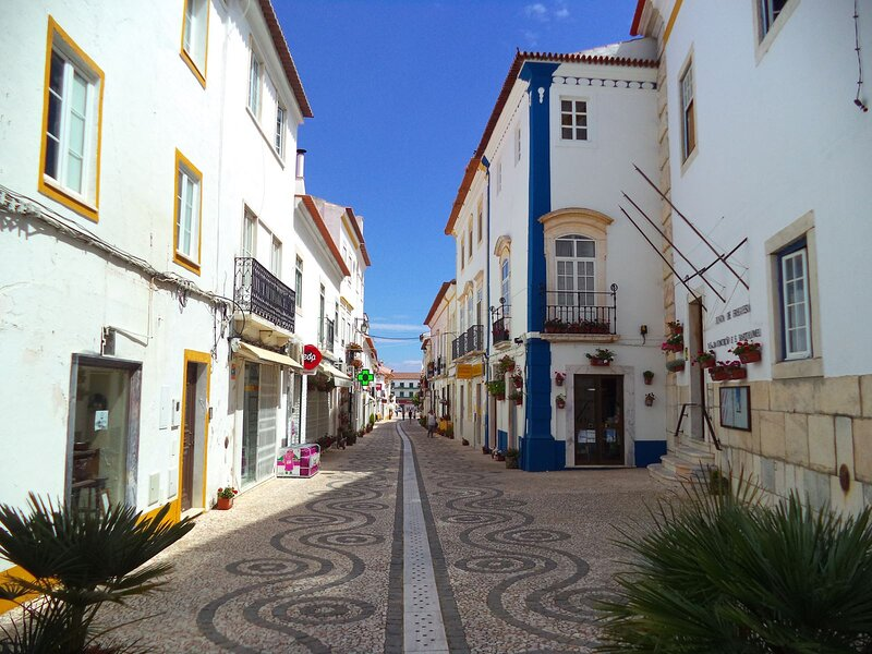 History, Oenology and Gastronomy in Alentejo, holiday rental in Olivenza