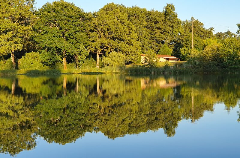 Totally private and exclusive countryside retreat., holiday rental in Breuilaufa