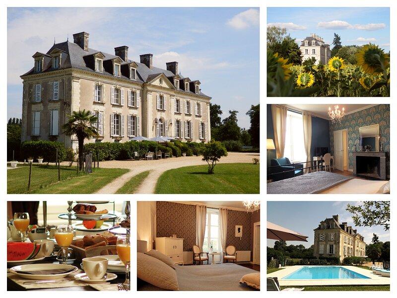 BnB Chateau La Mothaye - Loire Valley - Brion, holiday rental in Baune