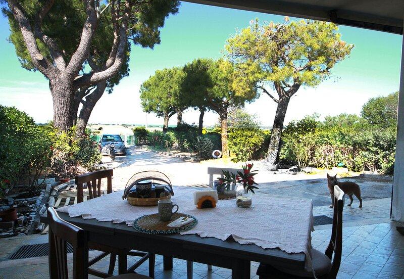 Stare in campagna o al mare? 7km per decidere!, holiday rental in Monte San Vito