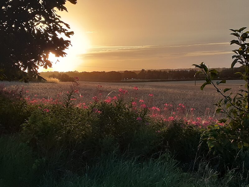 Sunset at Burradon Farm