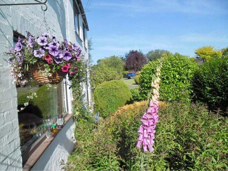 White Cottage, holiday rental in Tetford