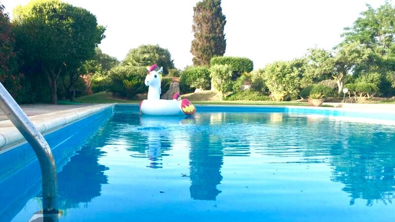 Alghero a charming villa with swimming pool, wifi, park, for 6 people, holiday rental in Villanova Monteleone
