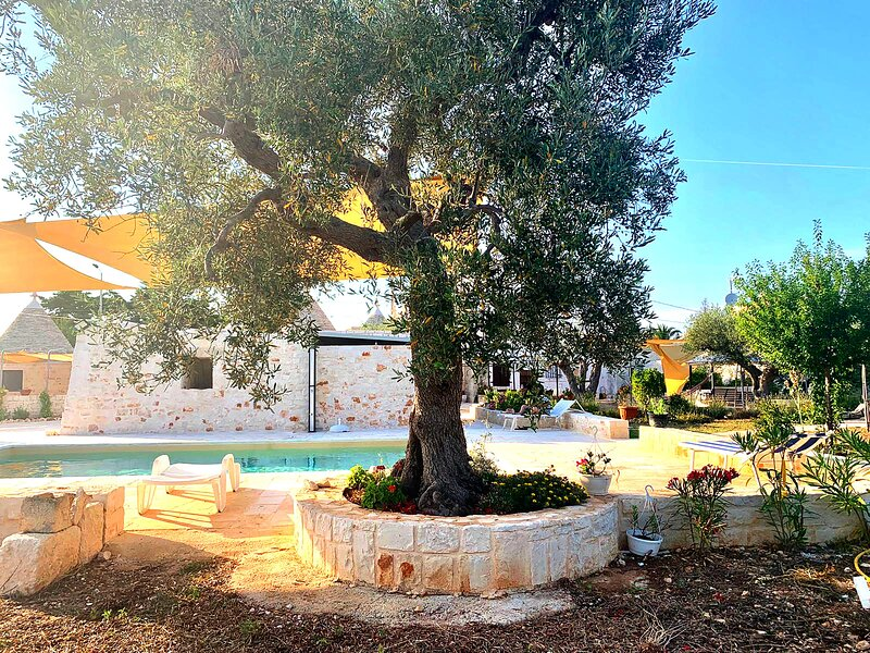 Trulli Negroamaro - Coreggia, holiday rental in Coreggia