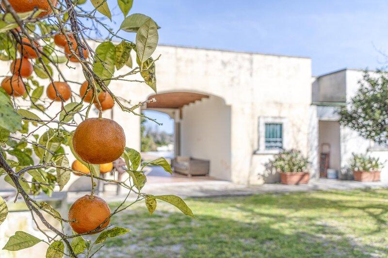 Masseria Bosci - Lecce, holiday rental in Arnesano