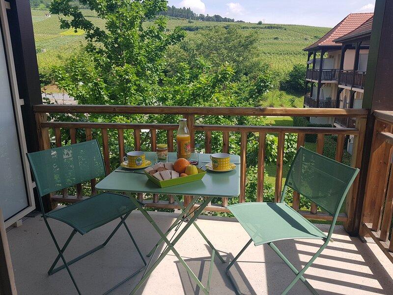 Un Petit Nid au coeur de l'Alsace, vacation rental in Rorschwihr