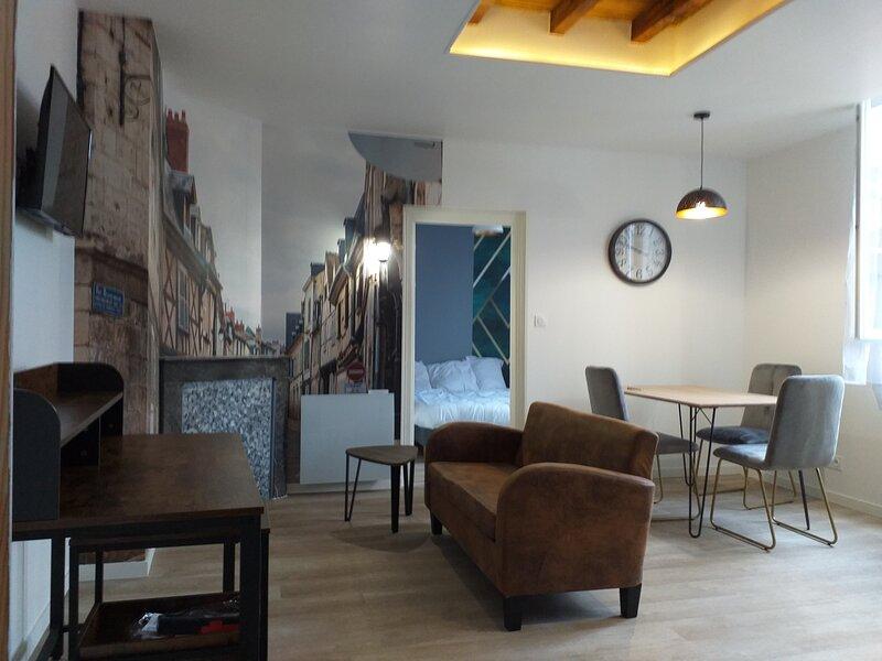 Les volets bleus- Appartement 1er étage refait à neuf avec jardin au calme, holiday rental in Morogues