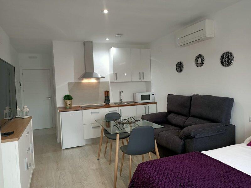 Apartamentos NAyDA studio 1, alquiler de vacaciones en Mérida