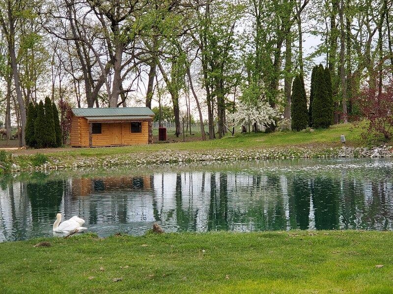 It's the Wright Farm, holiday rental in Chesterton
