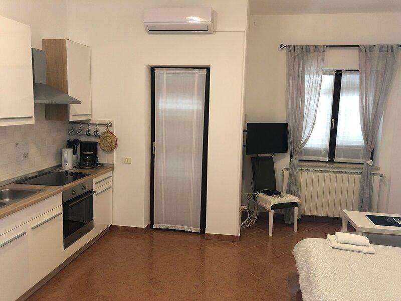 Apartments VESNA, location de vacances à Kosinozici