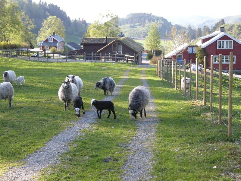 Farmers cottage, a lovely little house on the farm., location de vacances à Eikangervag