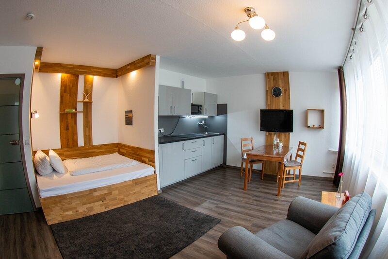 LuPartment - Apartmentvermietung mit Küche und voller Ausstattung - Stadtmitte, casa vacanza a Worms
