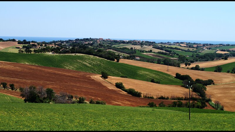 Countryside or sea in Italy within 7kms you can have both Close to Senigallia, holiday rental in Monte San Vito