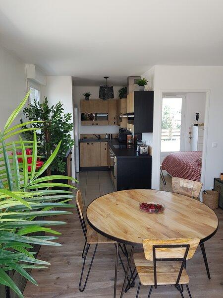Appartement grande terrasse au pied du RER A, holiday rental in La Queue-en-Brie