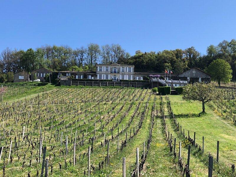 Le Gîte du Pavillon - Sainte-Croix-du-Mont, holiday rental in Loupiac