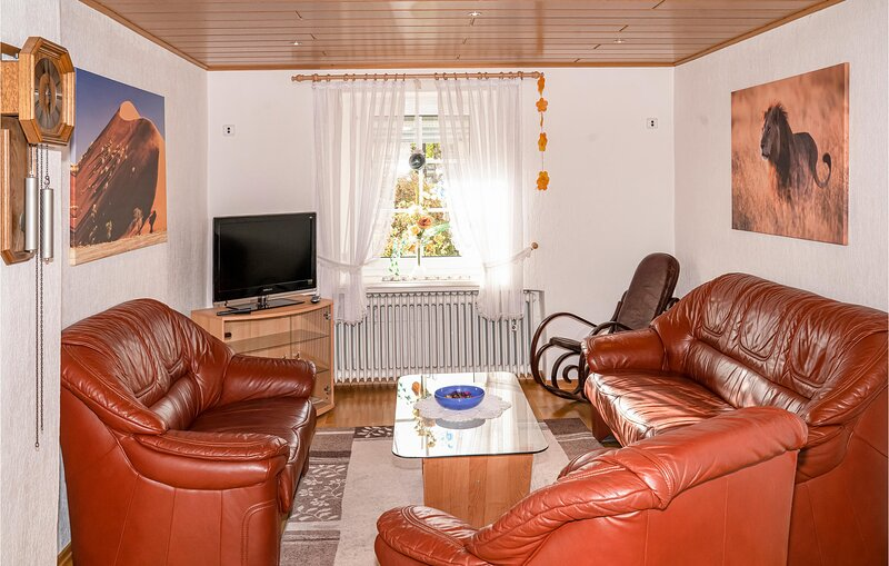 Beautiful home in Ellscheid with WiFi and 3 Bedrooms (DEI924), casa vacanza a Ulmen