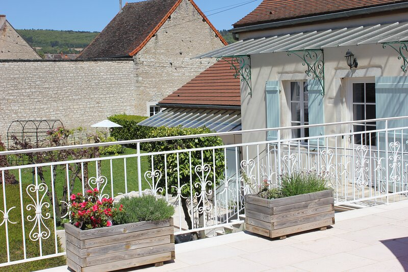 Luxury vigneron's home, in Heritage site, for larger groups wifi, A/C, terrace, vacation rental in Chassagne-Montrachet