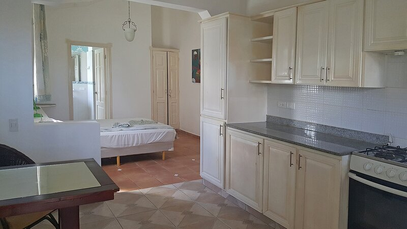 Ground-floor studio with full kitchen, right on the beach, breakfast included!, location de vacances à Gaspar Hernandez