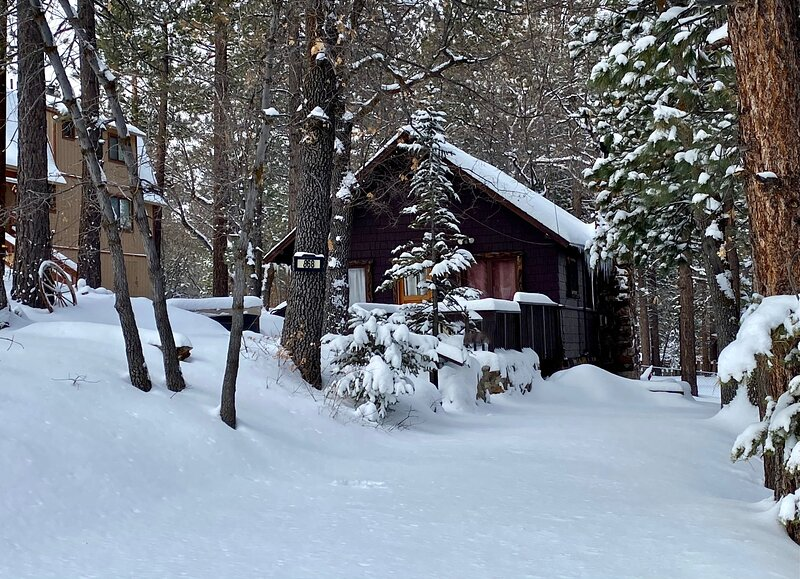 Snow covered Big Bear Cool Cabins, The Cozy Cub