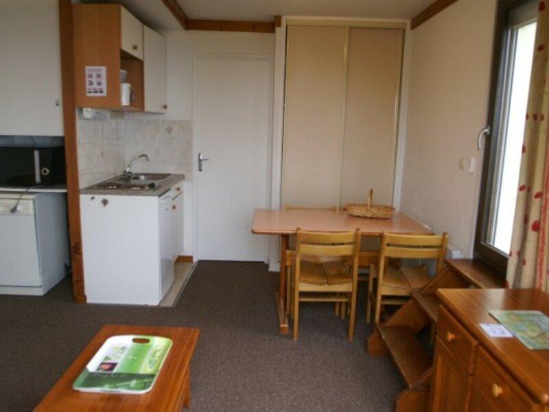 Studio cabine au pied des pistes résidence Bouquetins, holiday rental in Sainte-Agnes