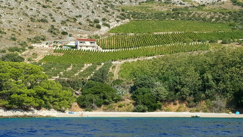 House MAJDA, vacation rental in Murvica