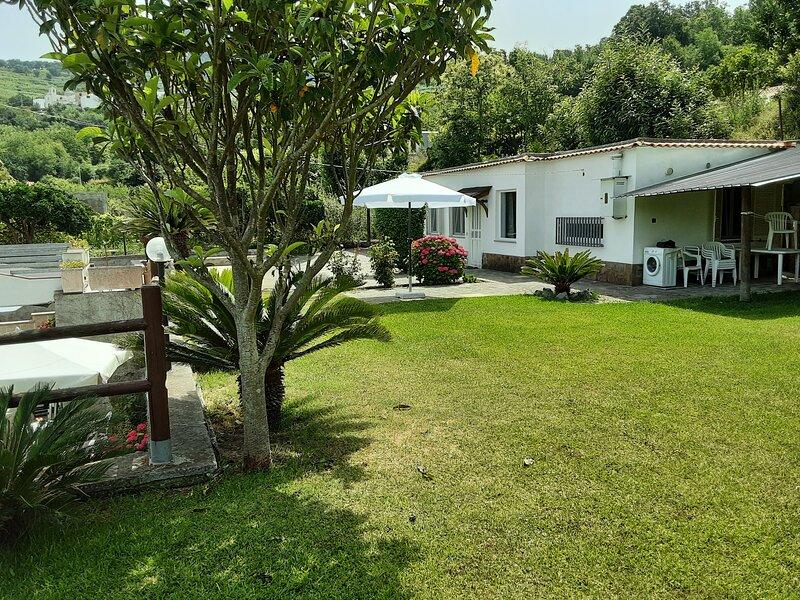 Le Castagne Apartments Ischia E, holiday rental in Barano d'Ischia