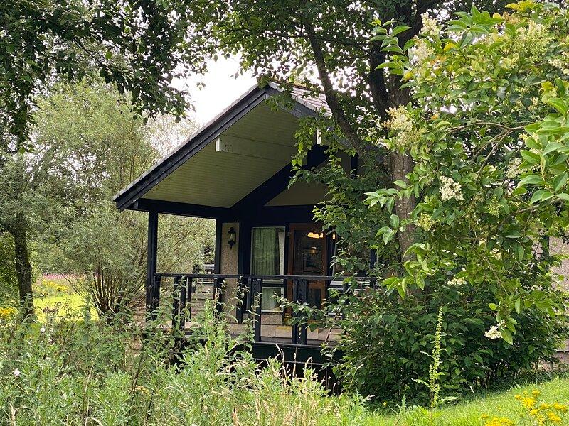 Cameron House Luxury Lodge Loch Lomond, holiday rental in Cardross