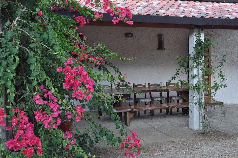 Amazing house near the beach, casa vacanza a Lacona