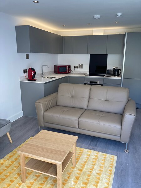 Rainbow View BRAND NEW Contemporary Apartment, alquiler de vacaciones en Totnes