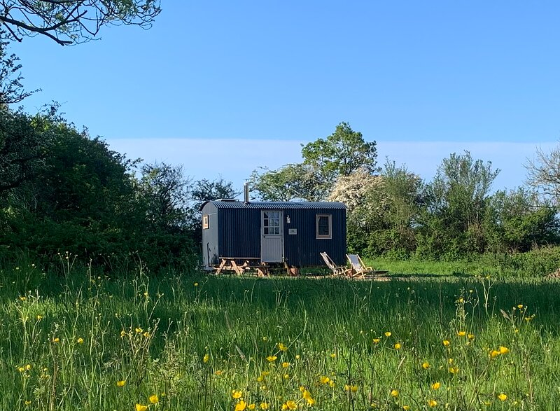 The Hogget Hut, vintage hand crafted shepherd's hut in rural Battle, vacation rental in Ninfield