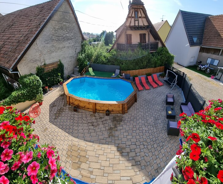 Amazing apartment with shared pool, holiday rental in Artzenheim