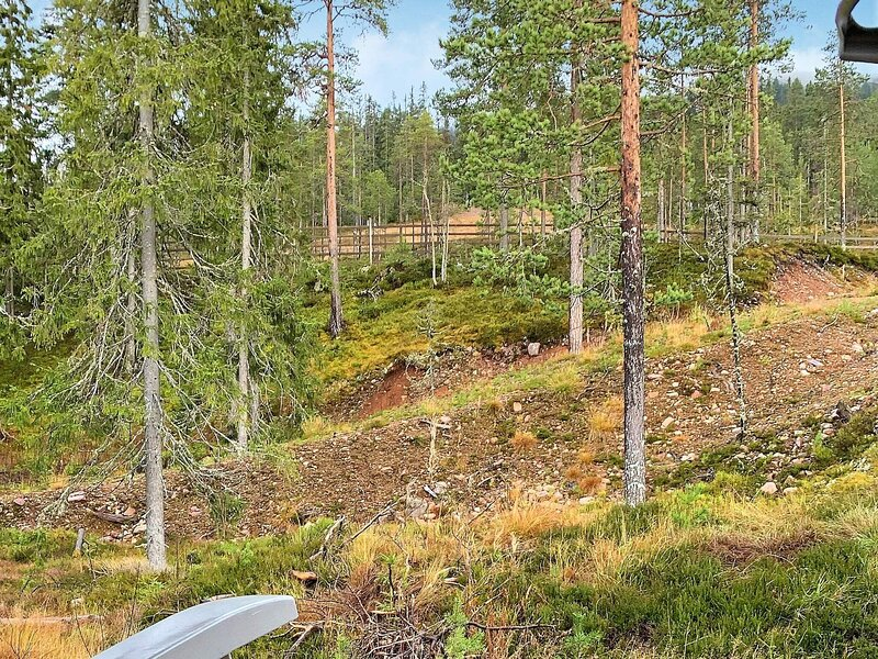 8 person holiday home in SÄLEN, holiday rental in Sorsjon