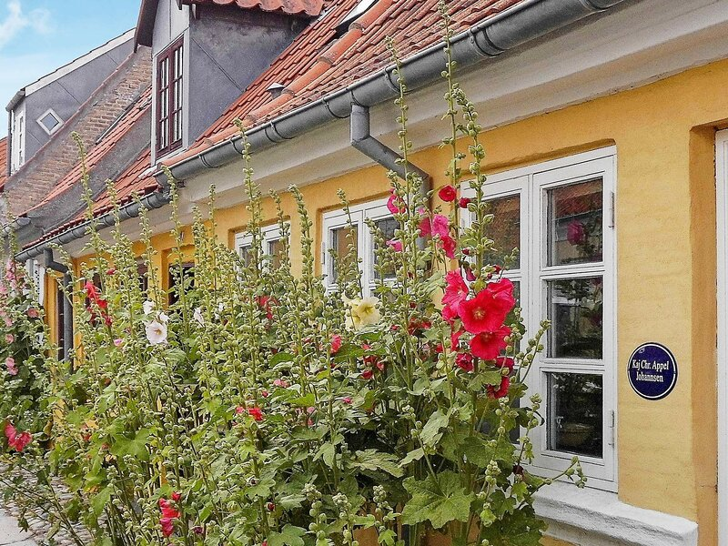 Charming Holiday Home in Rudkobing Syddanmark with Terrace, location de vacances à Tranekaer