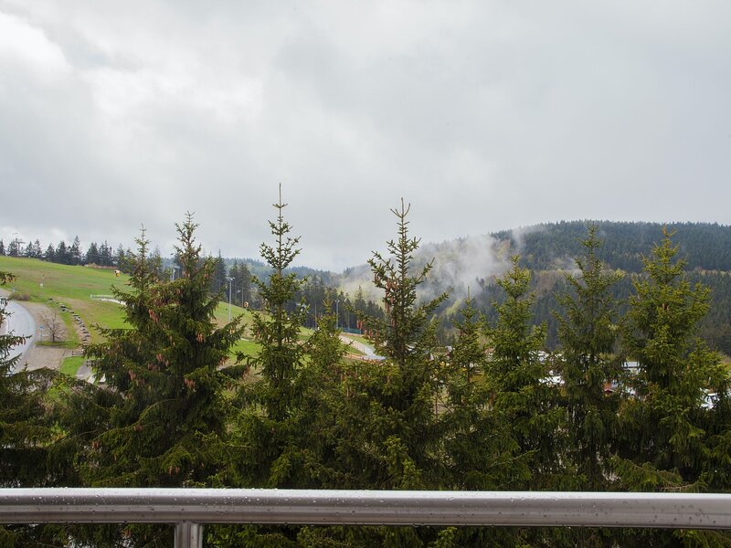 Modern flat in Winterberg with balcony and a great view of the bike park, casa vacanza a Langewiese