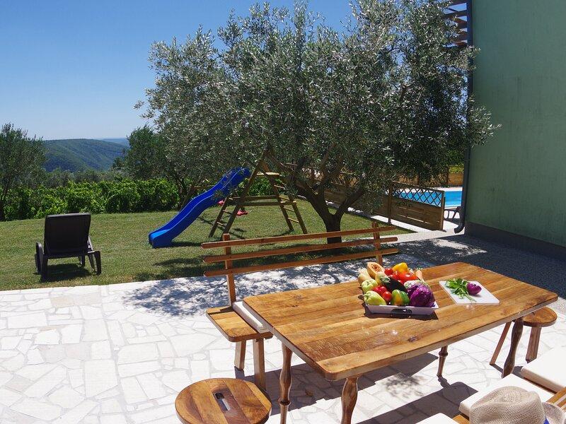 Spacious apartment in Sutivanac-Žminj overlooking vineyards, casa vacanza a Ruzici