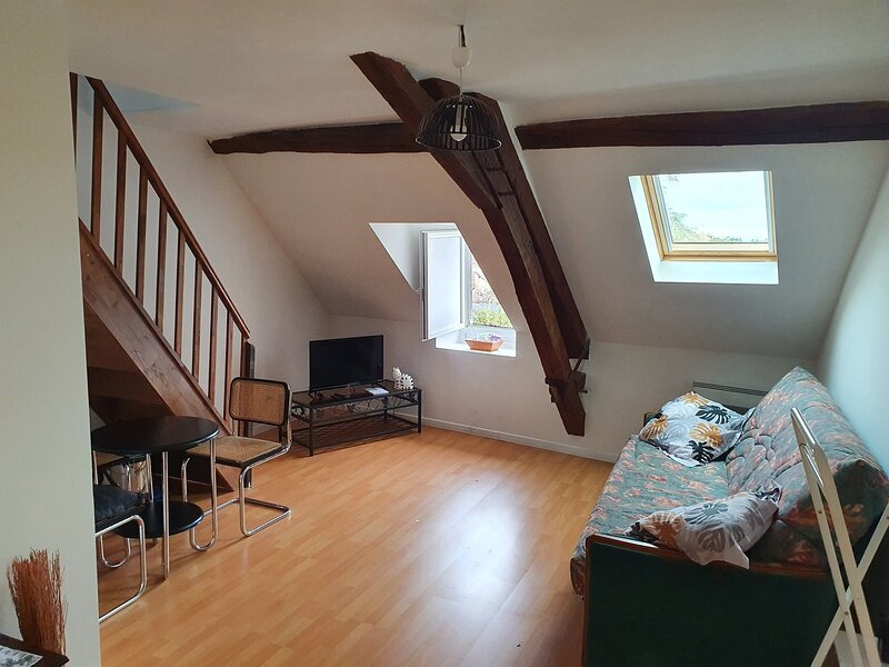 Pretty Apartment in Le Blanc near City Centre, holiday rental in Ingrandes