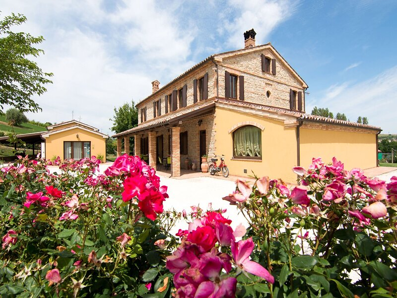 Apartment in Castelbellino in a farmhouse with swimming pool, holiday rental in Angeli Stazione