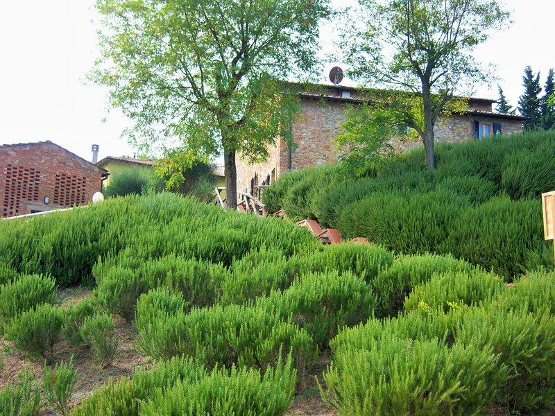 Idyllic Farmhouse in Gambassi Terme-Fi with Swimming Pool, holiday rental in Varna