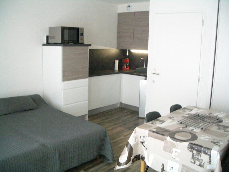Centre ville, Coquet studio orienté Est au 5ème étage avec asc et parking, holiday rental in Mouxy