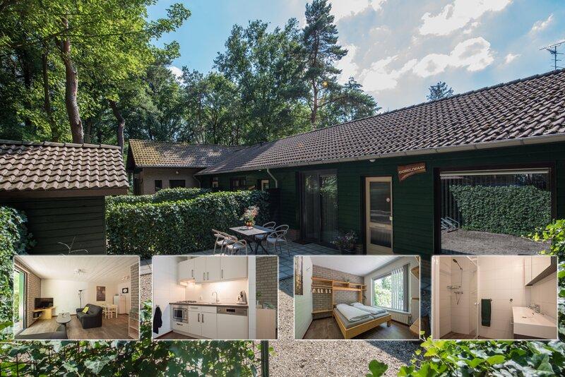 Knobbelzwaan, holiday rental in Veghel