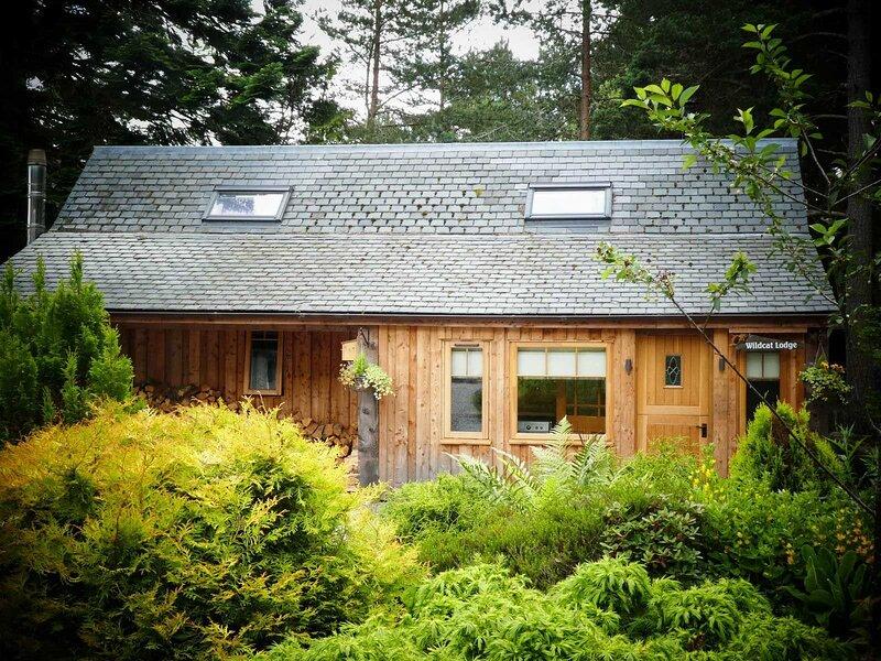 Wildcat Lodge, holiday rental in Carrbridge
